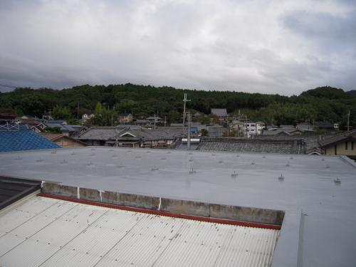 20101027-0.jpg